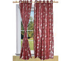 Shandar Cancer Curtain Maroon Door (Brown)