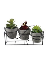 Set Of 3 Artificial Decorative Plant With Single S...
