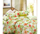 Aapno Rajasthan Cotton Double Bedsheet with Floral Print, green