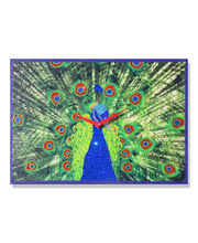 Zeeshaan Mayur(Peacock) Wall Clock, multicolor