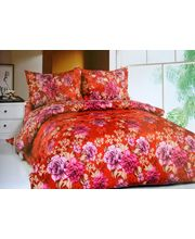 Double Bed Sheets With 2 Pillow Covers (ZN 015), multicolor