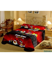 Angry Birds Single Bedsheet With 1 Pillow Cover, multicolor