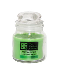 The Elephant Company Yankee Jar Eucalyptus Mint, green