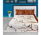 Story At Home Pure Cotton Double Bedsheet With 2 Pillow Cover, brown