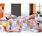 Royal Elegance Bed Sheet With Pillow Covers, multicolor