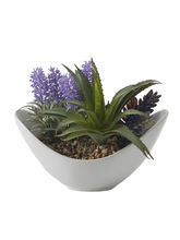 Aashi Gifts Artificial Plant With Ceramic Pot, Mul...
