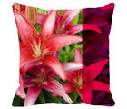 Leaf Designs Lily Cushion Cover