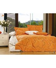 Story Joyfull King Size Double Bed Sheet FE1035, multicolor