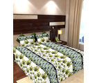 Story At Home 144 TC Pure Cotton Double Bedsheet With 2 Pillow Cover, green