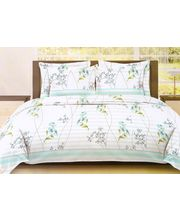 Bombay Dyeing Bed Sheet Set ST-6564, multicolor
