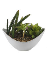 Aashi Gifts Green Artificial Plant With Ceramic Po...
