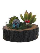Aashi Gifts Artificial Plant & Hut Motif With Wood...