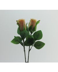 Importwala Peach Rose Set Of Two, multicolor