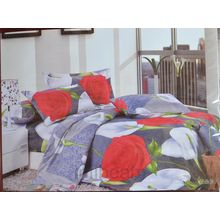 Picaso Bed sheet With Cover P020, multicolor