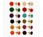 Nisa Pearls Synthetic Coral Earrings for Women