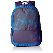 American Tourister Clik-07 Casual Backpack (13O (0) 91 007),  purple