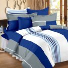 Ahmedabad Cotton Basics Cotton Double Bedsheet With 2 Pillow Covers (ACB20D00042)