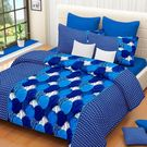 Ahmedabad Cotton Basics Cotton Double Bedsheet With 2 Pillow Covers (ACB20D00044)