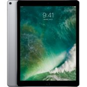 Apple 12.9-inch iPad Pro Wi-Fi - 2nd Gen,  silver, 512 gb