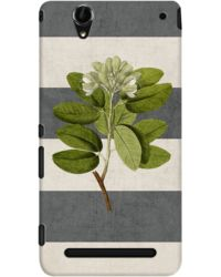 DailyObjects Botanical Stripes 5 Case For Sony Xperia T2 Ultra