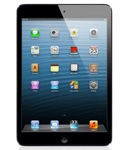 Apple 16GB iPad mini with Wi-Fi (Black)