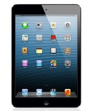 Apple 16GB iPad mini with Wi-Fi + Cellular (Black)