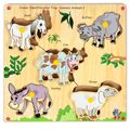 Skillo Junior Identification Tray (With Knobs) Common Animals I (Multicolor)