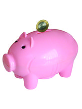Buddyz Pig - Shaped Coin Bank, multicolor